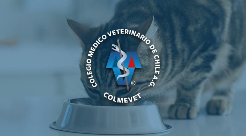 Comunicado Posibles efectos en la salud de felinos por consumo de alimento de industria nacional