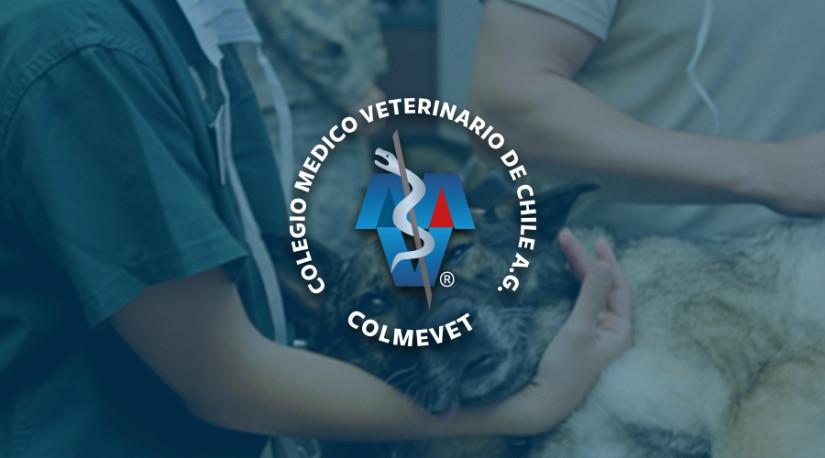 Comunicado Colmevet respecto de comentarios del Diputado Karim Bianchi sobre Médicos Veterinarios