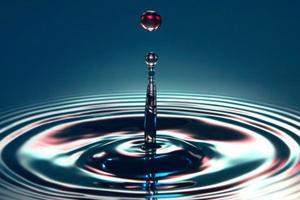 Fundación Chile, CORMA y SNA Crean Piloto para Certificar Uso Eficiente del Agua