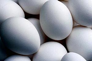 Informe de Producción de Huevos en Chile