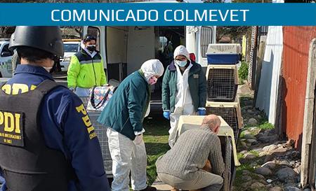 Comunicado: Maltrato animal en Isla de Maipo