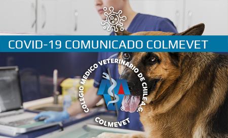 Colmevet refuerza el resguardo de la salud humana y animal definiendo los servicios esenciales y no esenciales, durante esta emergencia sanitaria
