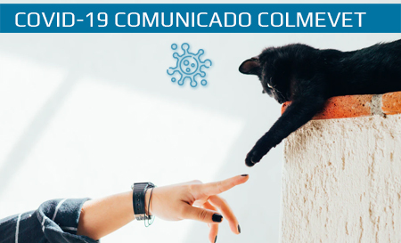"""Comunicado: """"Hasta la fecha no hay evidencia científica de que los animales de compañía sean una fuente de infección para las personas y otros animales"""""""
