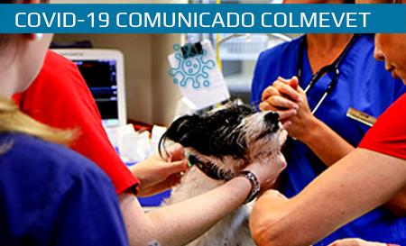 Comunicado aclaratorio en relación a los permisos de desplazamiento para médicos veterinarios