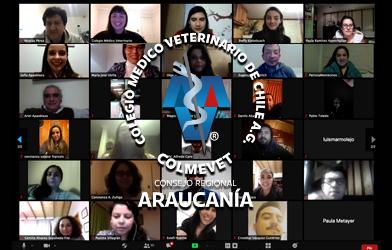 ¡Bienvenido nuevo Consejo Regional Araucanía!