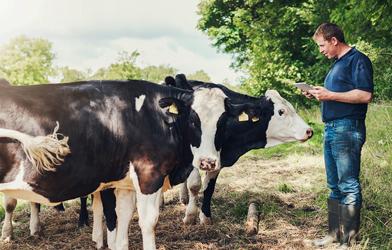 Colmevet conforma la nueva Comisión Nacional de Bienestar Animal