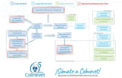 ¿Cómo puedo participar en Colmevet? Descubre todos los espacios para aportar tus conocimientos y experiencia