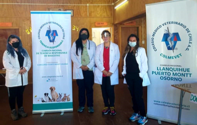 Exitoso operativo gratuito de vacunación antirrábica en Puerto Montt