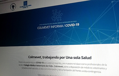 Toda la información médico veterinaria sobre COVID-19 en un mismo sitio